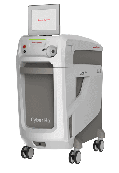 Cyber Ho