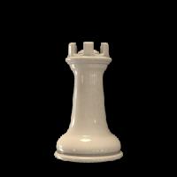 rook-white